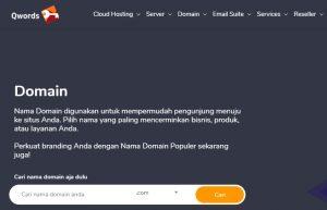 Domain Website