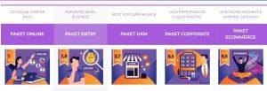 Paket Bikin Website